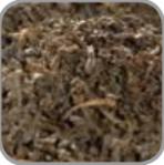 ceylon-op-deteinated-tea