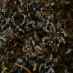 darjeeling-sirubari-teesta