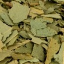 eucalipto-tisana