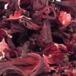 ibisco-rosso-tisana