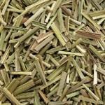 lemongrass-tisana