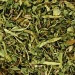 tarassaco-foglie