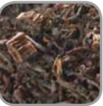 tea-frisia-oriental