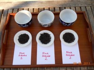 degustazione-tè-thè