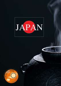 copertina-accessori-japan